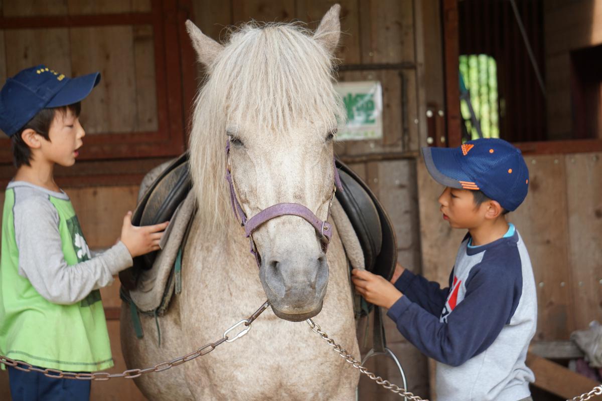 【H1・H5・K1・K3】北海道・道南エリアのコース/夏休み子どもサマーキャンプ2016