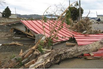 東日本大震災 親の会、居場所、家庭は…