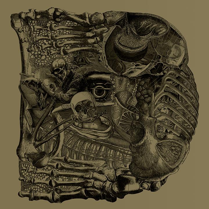 特別座談会:Boris最新アルバム『DEAR』(Atsuo×河村康輔×田巻祐一郎×那倉太一)#1