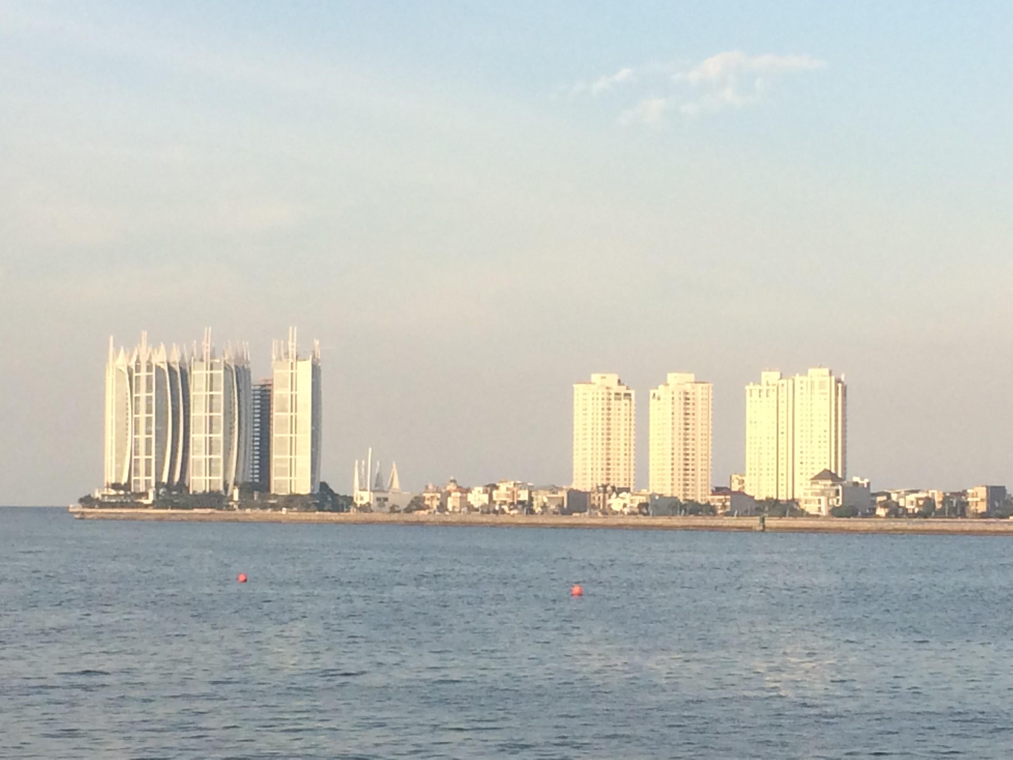 ジャカルタ湾の埋め立てプロジェクト問題(大島空良)
