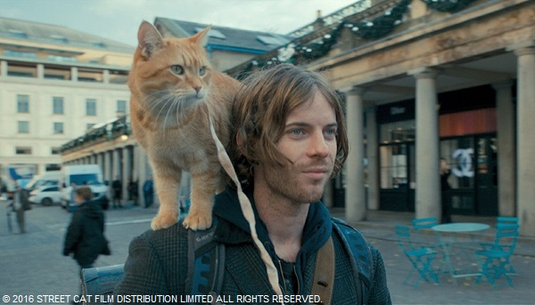 映画川 『ボブという名の猫 幸せのハイタッチ』 (渥美喜子)