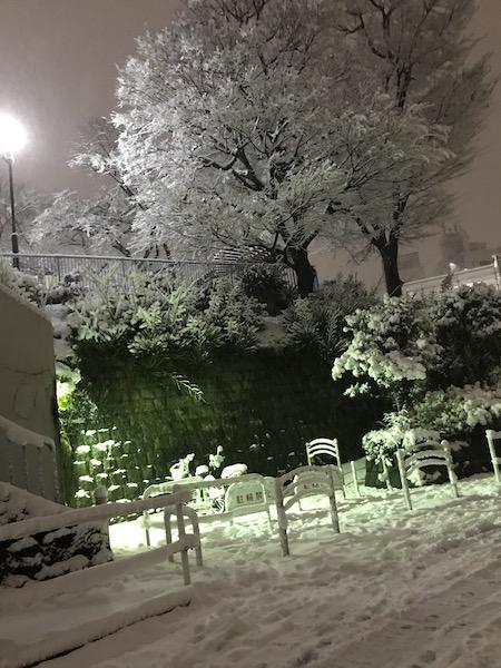 樋口泰人の妄想映画日記 その61