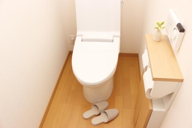 「理屈はあとでわかる」と教えてくれた「トイレの神様」 【ただいま別室登校中】