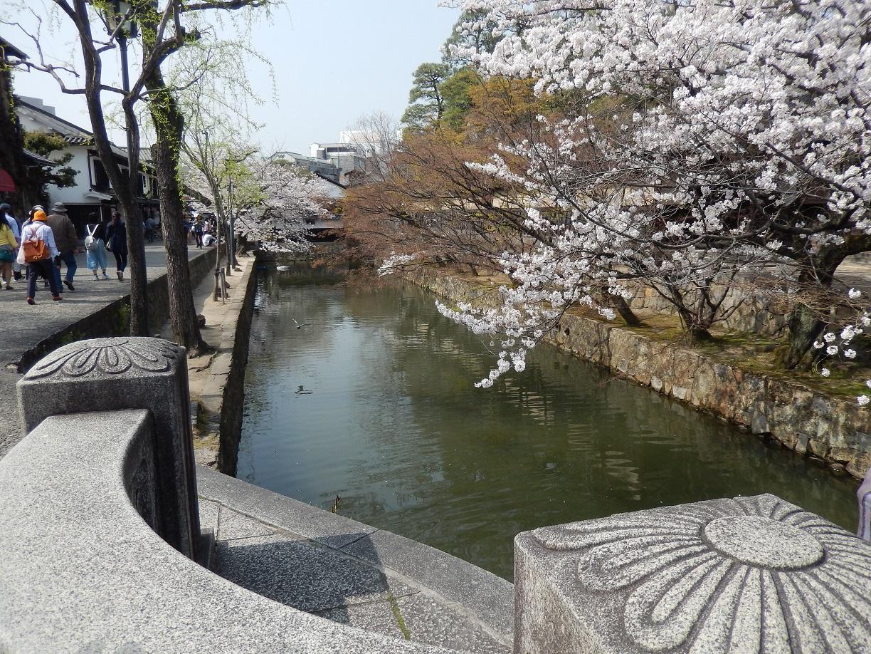 2018年、倉敷美観地区 桜まつり