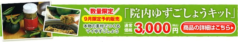 【お知らせ】2013年てづくりゆずごしょうキット販売中【まもなく終了!】