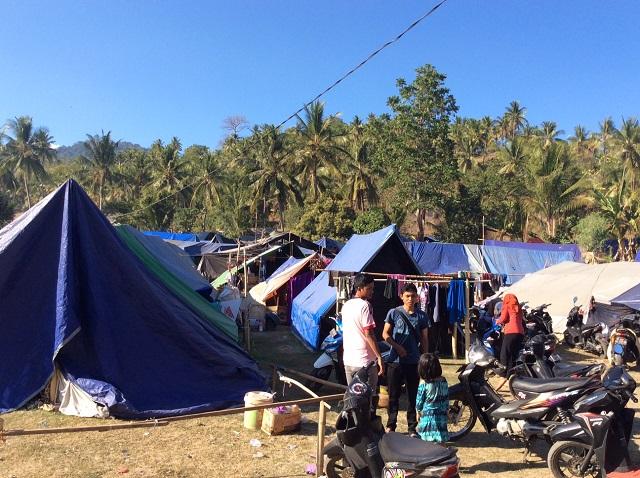 ロンボクだより(11):1000のテントの島へようこそ(岡本みどり)(全文無料掲載)