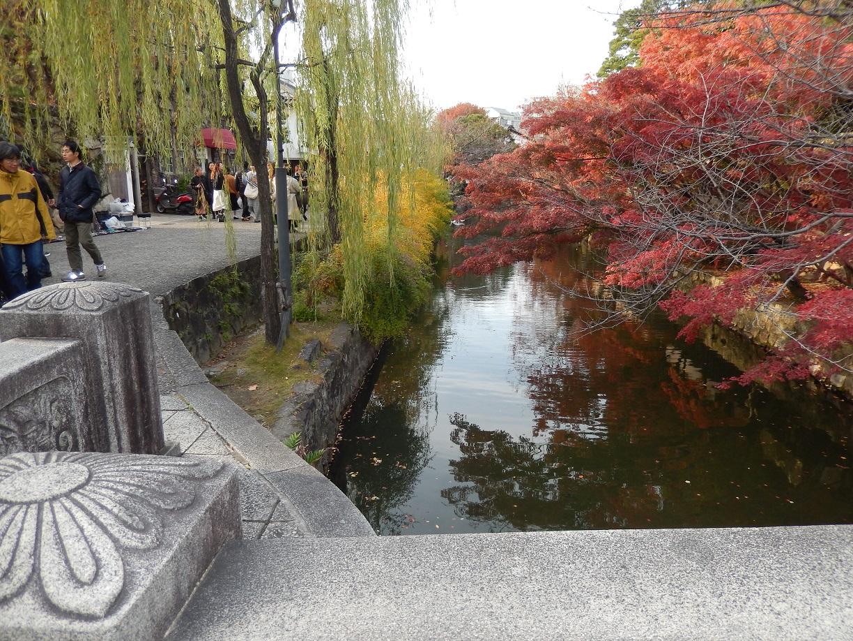 倉敷美観地区、散歩、2018-11月、いよいよ紅葉始まる!