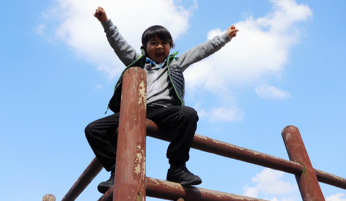 子どもの成功体験をデザインする!エラーレスラーニングのすすめ~「誤りや失敗をさせない」学習方法とは?