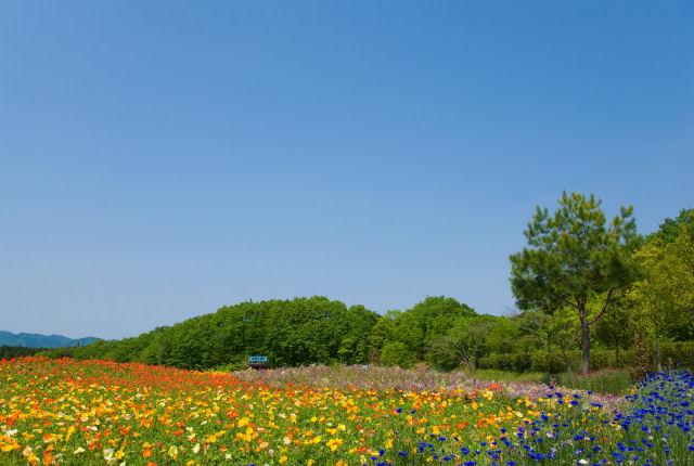 ゛悩んで掴んだ自信の種゛ 夏の全国合宿in福島