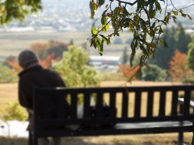 迫りくる危機~知的and/or発達障害者の家族ケアラーの高齢化