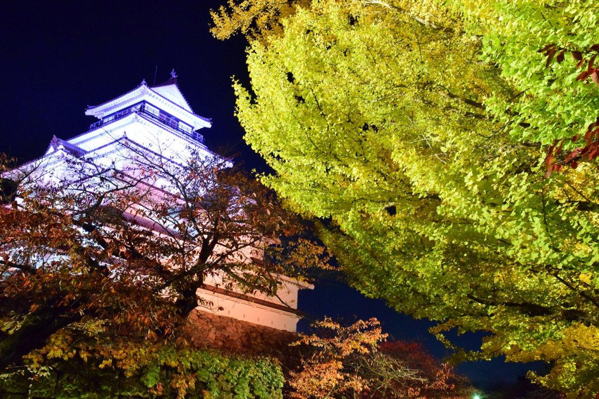 紅葉の鶴ヶ城ライトアップ