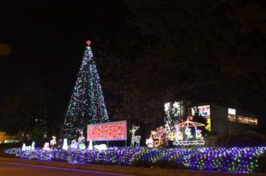 東浦和駅を彩る、クリスマスツリー!