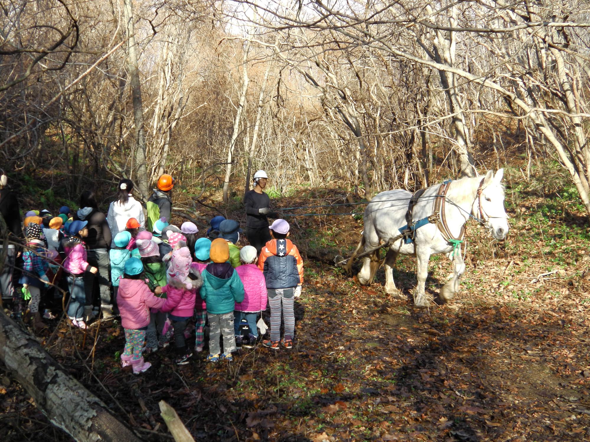 子どもの自然体験活動コーディネーターという仕事-子どもと自然と地域をつないで新しい学びを生み出す!