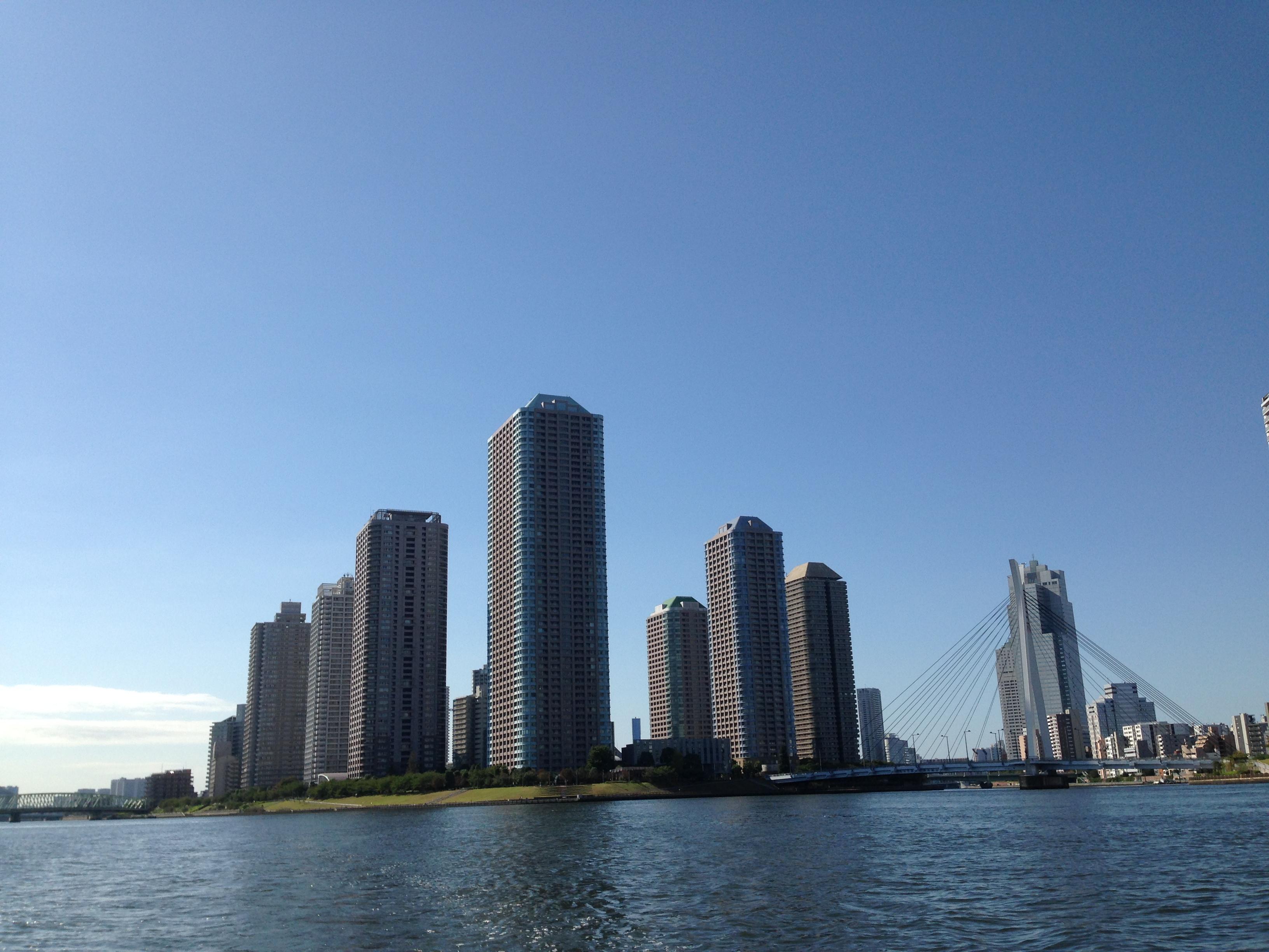 東京の川や海は、雨が降ると汚れます!
