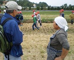 食育は農業体験から 平成24年度マッチングファンド事業