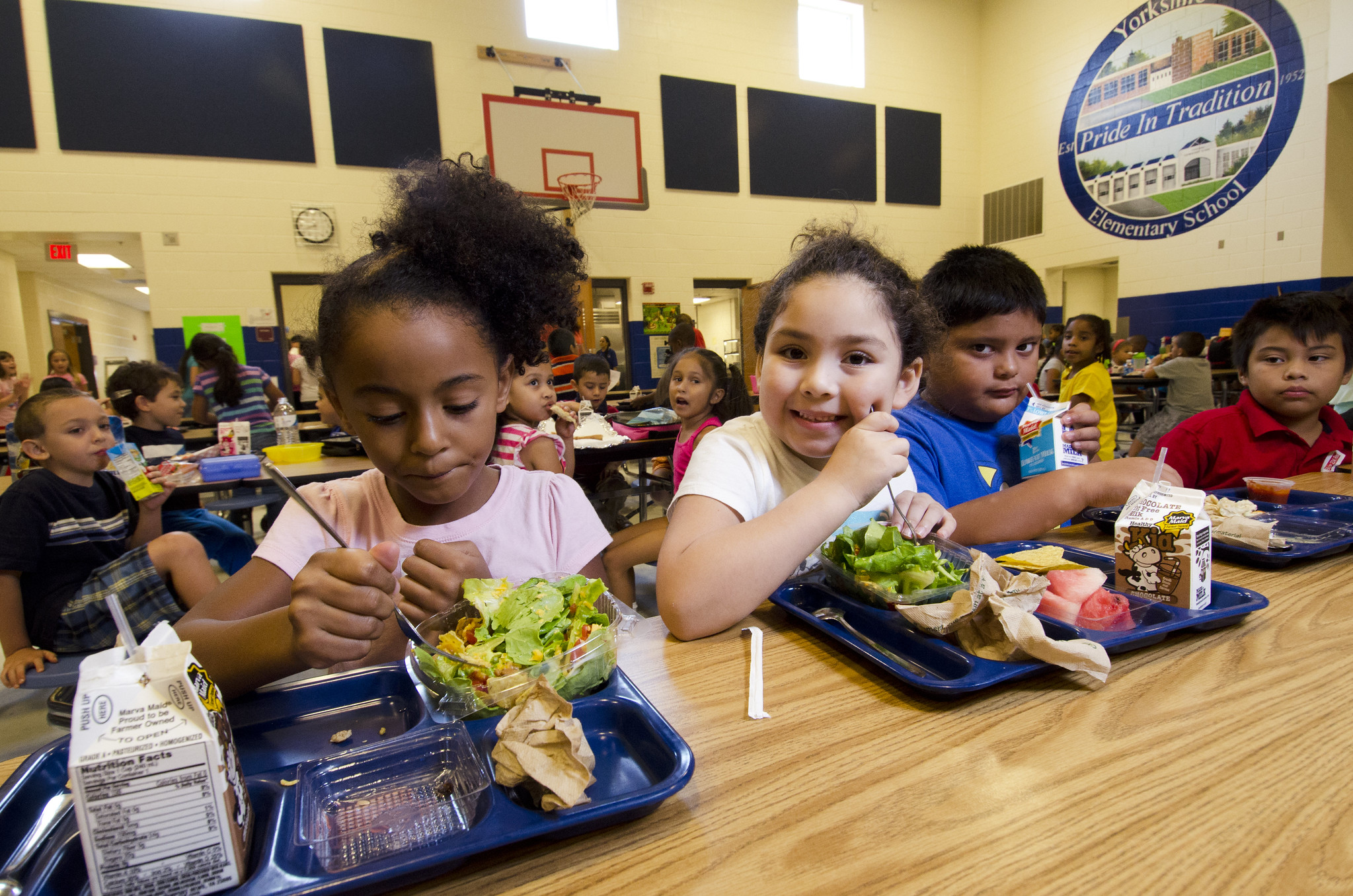世界に誇る食習慣を育む日本の学校給食-好きな物だけ食べてあとは残しても良し!?アメリカの学校給食事情