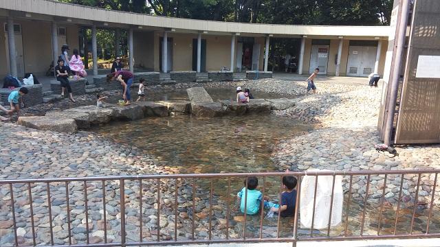 【子ども・遊び場】夏の水遊び特集!じゃぶじゃぶ入れる水場は区内4カ所/水質検査や監視員も