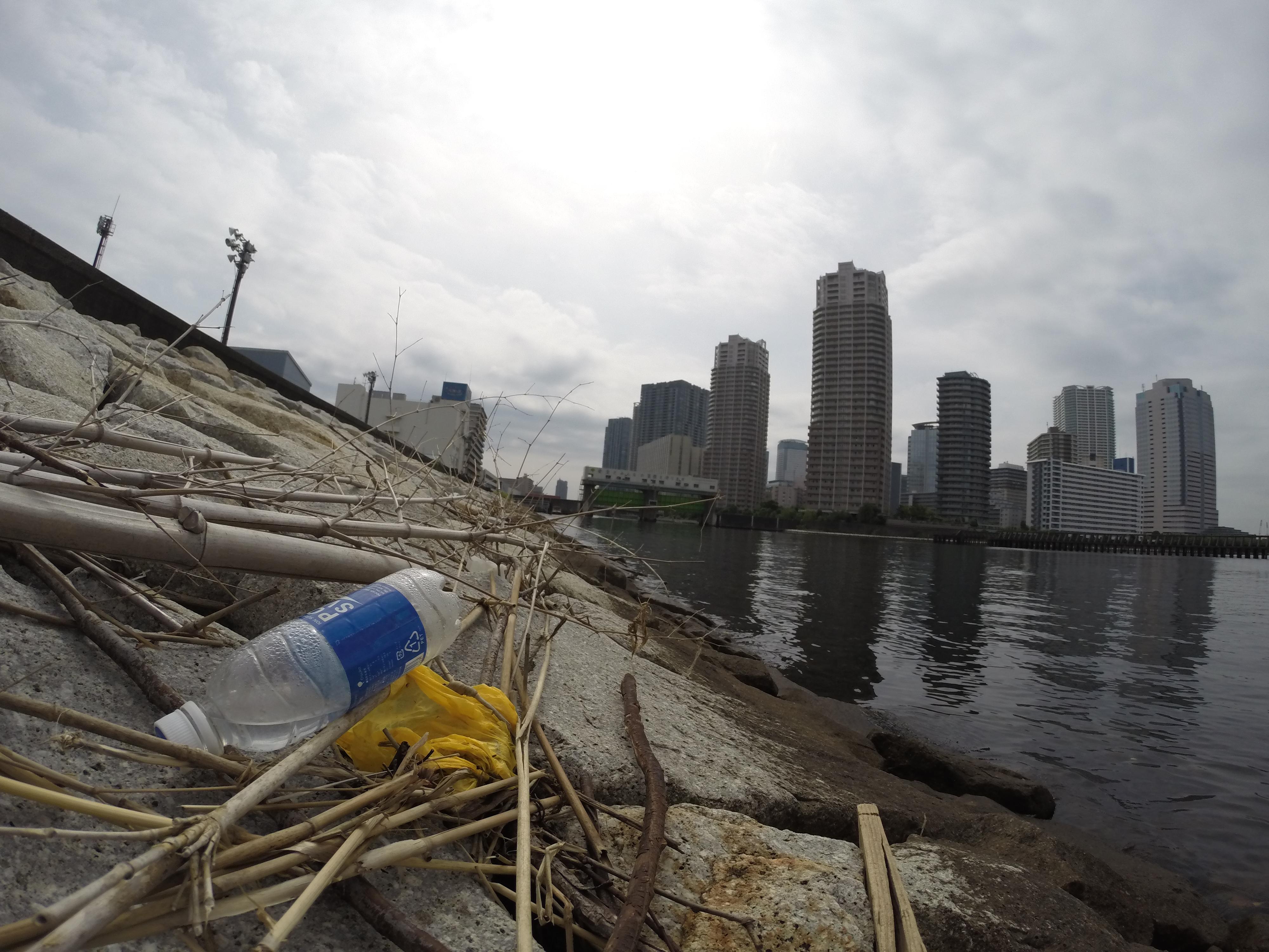【活動報告】 水辺の清掃活動を実施しました!