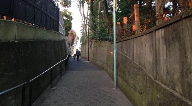文京区の名坂(東京坂道ゆるラン)二つの幽霊坂についての考察