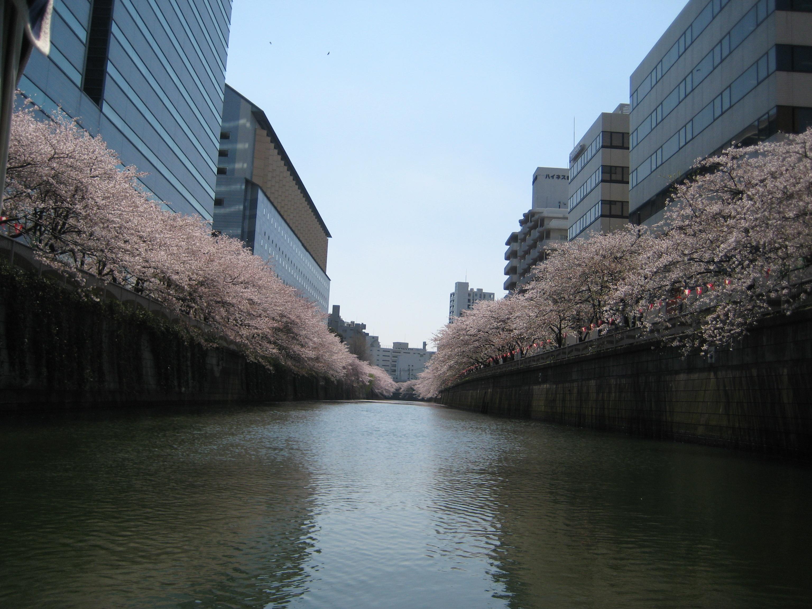 東京の水辺からとっておきの1枚をカメラに収めてみませんか?
