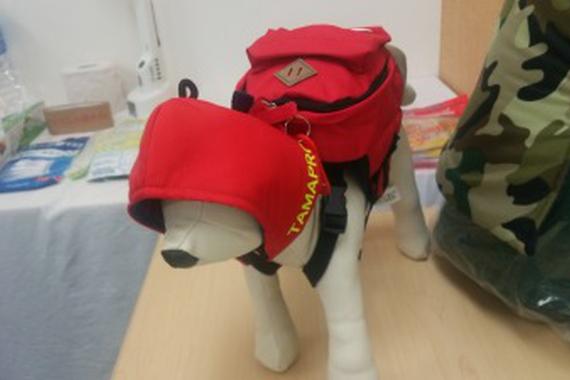ペット災害危機管理士