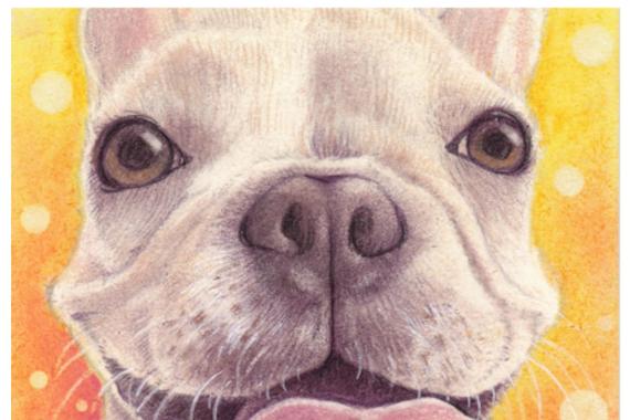 パステル画で愛犬の思い出を