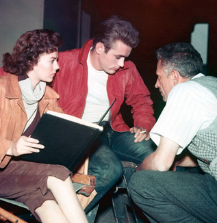 Making of Rebel without a Cause ――またはJ・フランコふたたび(川口敦子)