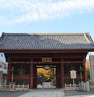 【気まぐれ寺社探訪】護国寺で四季の移り変わりを楽しむ