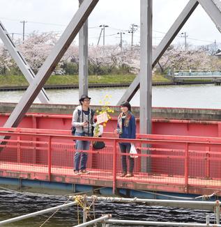 内野の桜を見に行こう!〜内野の桜の名所巡りツアー②〜