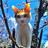 eiichi_tanoue