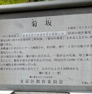 江戸の坂道(菊坂)