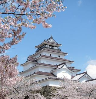 春爛漫・會津鶴ヶ城
