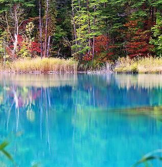 裏磐梯の五色沼湖沼群~スカイブルーの弁天沼に魅せられて~