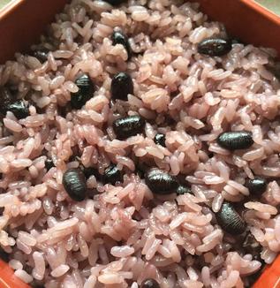レシピ『みとり炊きおこわ』