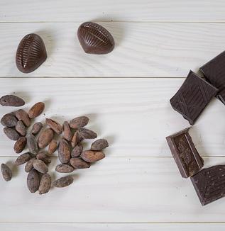非薬物療法 第17回 チョコレートは健康に良いでしょうか?