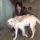 yu_endo_0211